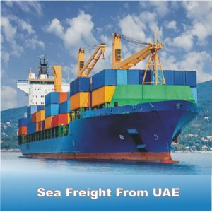 Sea Freight From UAE by next movers