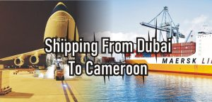 Shipping From Dubai To Cameroon