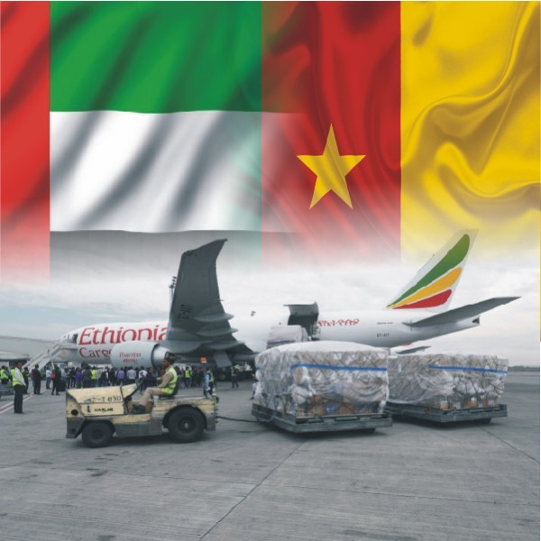 Shipping From Dubai To Cameroon by air cargo