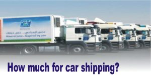 How much for car shipping? by next movers